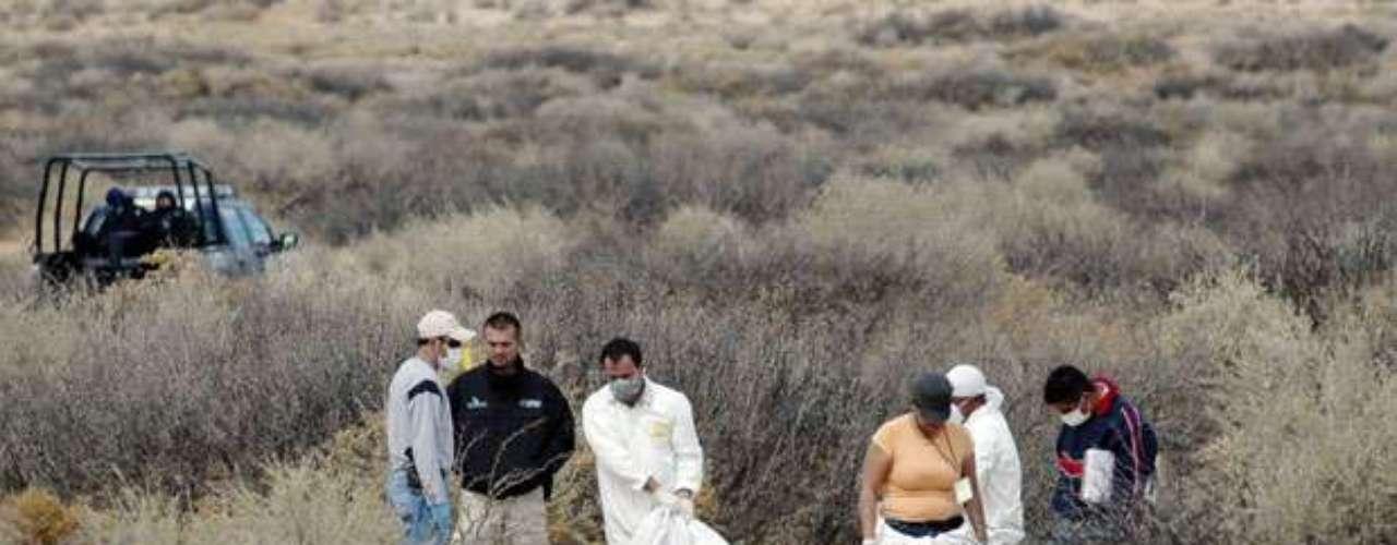 La ola de violencia que impera en la ciudad también se debe a la guerra entre pandillas, ya que los carteles de la droga contratan a sus miembros como sicarios, en especial las pandillas conocidas como Los Aztecas y Los Mexicles.