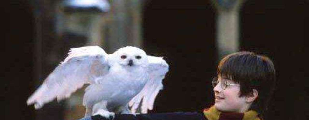Harry Potter (Daniel Radcliffe) en Harry Potter y la Piedra Filosofal (2001): Harry es un huérfano británico criado por unos tíos que en su undécimo cumpleaños descubre que es un mago.. La verdad no hace falta mucha presentación ya que Harry se ha transformado en uno de los personajes más queridos del cine.