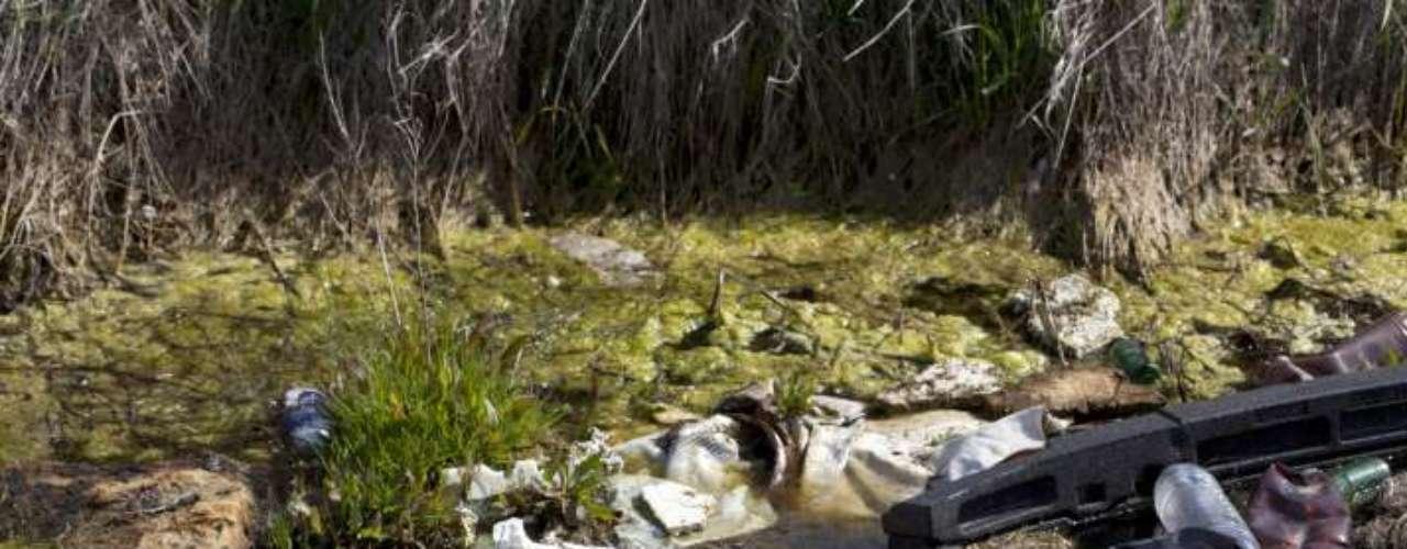 En contacto con la tierra y las napas de agua, estos desechos tóxicos continúan contaminando. Una sola pila, por ejemplo, es capaz de contaminar 14 mil litros de agua.