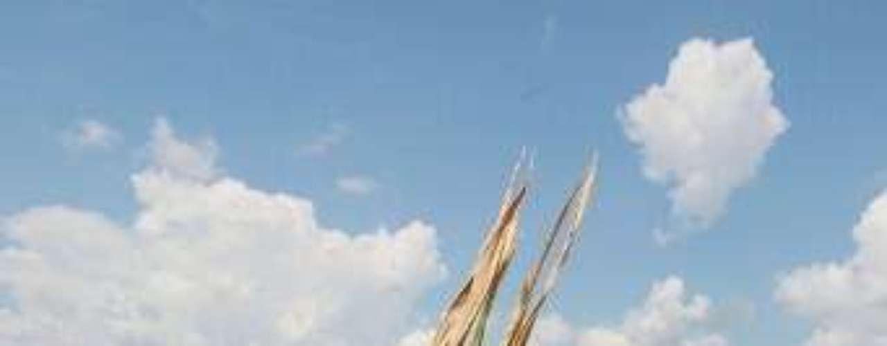 Los precios de la soja en la Bolsa de Chicago fijaron un récord máximo y el maíz cerró cerca de un nivel histórico debido a que miles de hectáreas de cosechas se chamuscaron en medio de temperaturas superiores a los 38 grados Celsius en la zona productora de maíz.