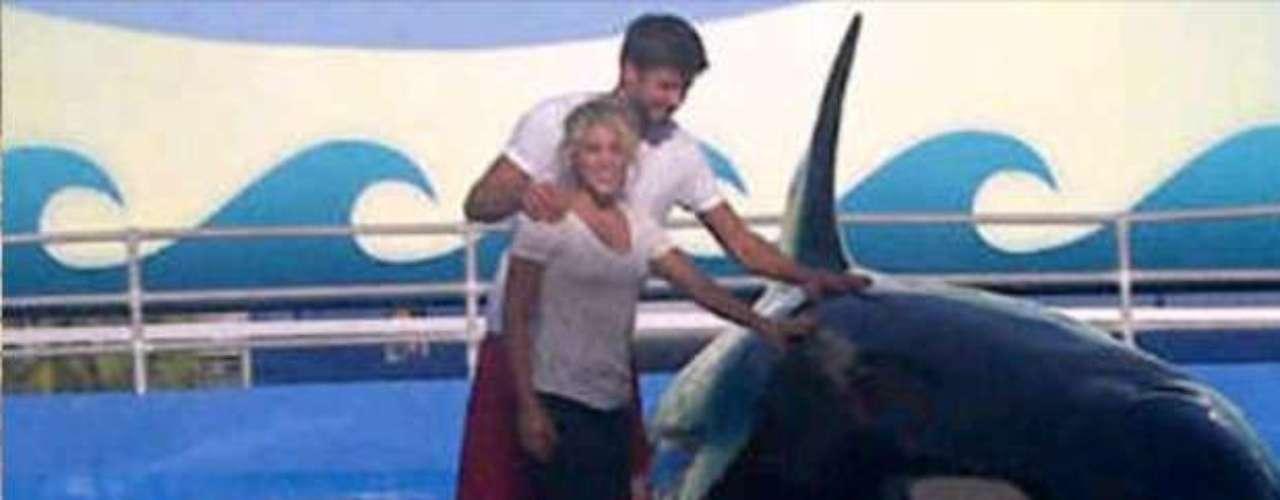 Ambos disfrutaron del ecuentro con el animal marino.