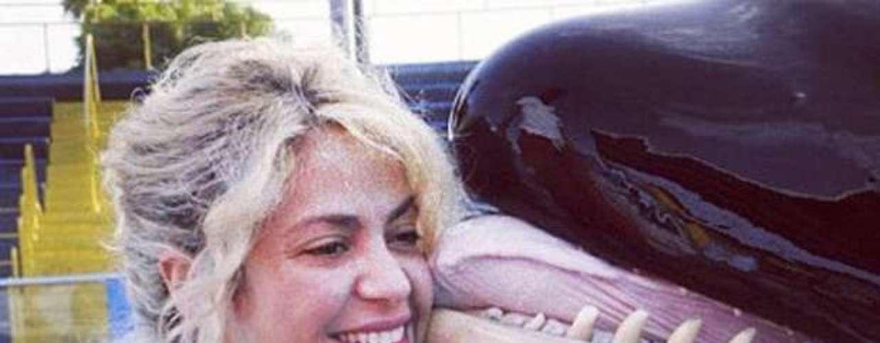 Shakira, totalmente feliz, se dejó besar por una orca en su visita a un parque acuático en Estados Unidos. La estrella se encuentra de vacaciones por el territorio estadounidense, con su novio Gerard Piqué y ambos han compartido con los fanáticos algunos de estos momentos por las redes sociales.