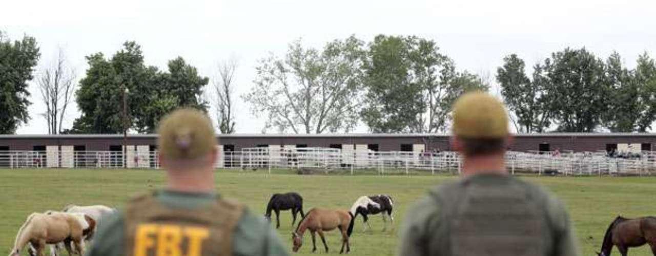 En junio pasado siete presuntos miembros de Los Zetas fueron arrestados en Texas luego de que la justicia de Estados Unidos acusara a un total de 14 miembros de la banda de lavar dinero por medio de la crianza y las carreras de caballos. Entre los detenidos se encuentran el hermano del líder de Los Zetas, José Treviño Morales, de 45 años, y su esposa, Zulema Treviño, de 38, quien será enjuiciados en octubre próximo.
