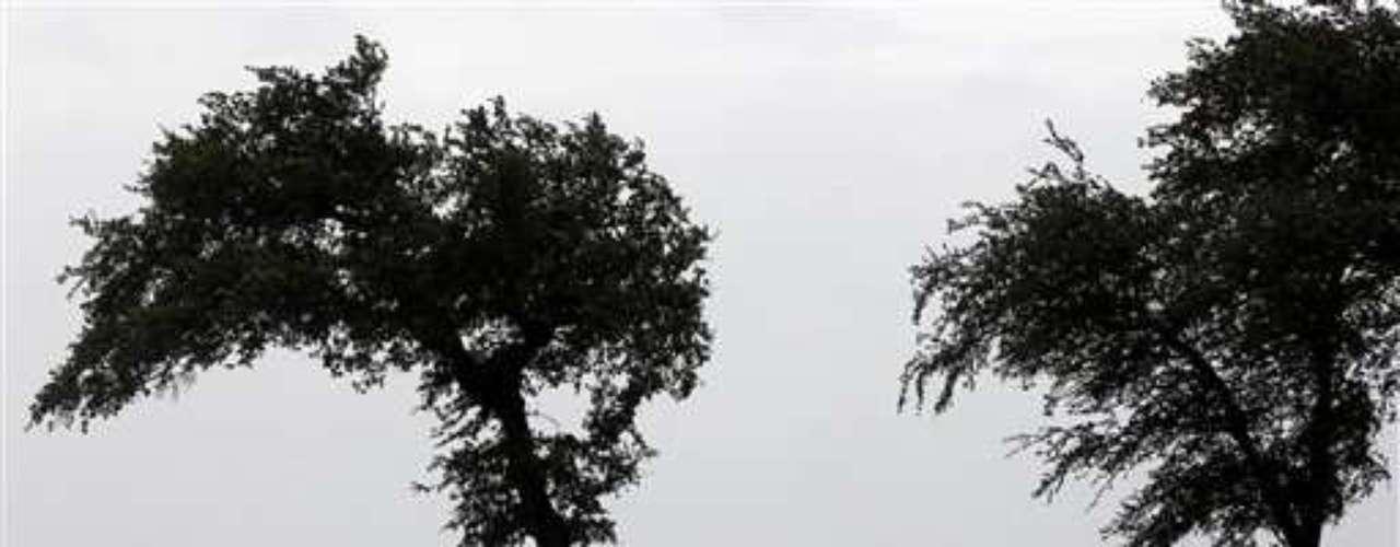 Alrededor de 180.000 hogares y negocios se quedaron sin electricidad hoy en el sureste del estado de Luisiana después de que el huracán \