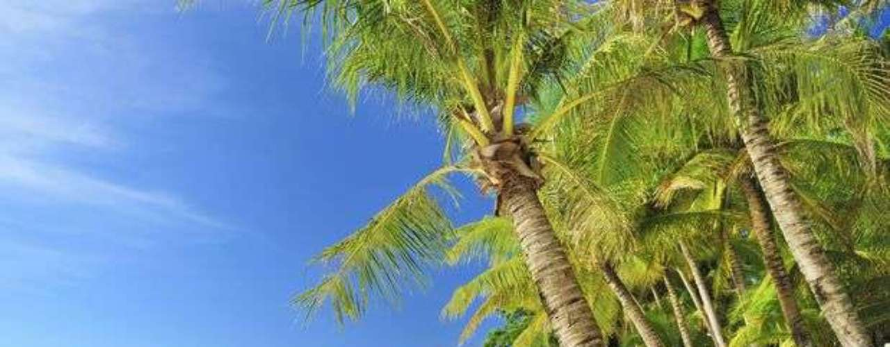 White Beach, Boracay, Filipinas: esa playa en las Filipinas es tan reservada durante el día que los que la conocen prefieren mantener secreto para que no se llene de turistas en el verano. Aun así, cuando anochece, el lugar recobra vida. Hay shows con fuegos artificiales, bandas en vivo, fiestas que duran hasta la madrugada y las casas nocturnas y bares se llenan.