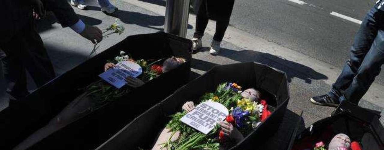 De esta manera protestan contra el uso de las pieles animales en artículos comerciales.