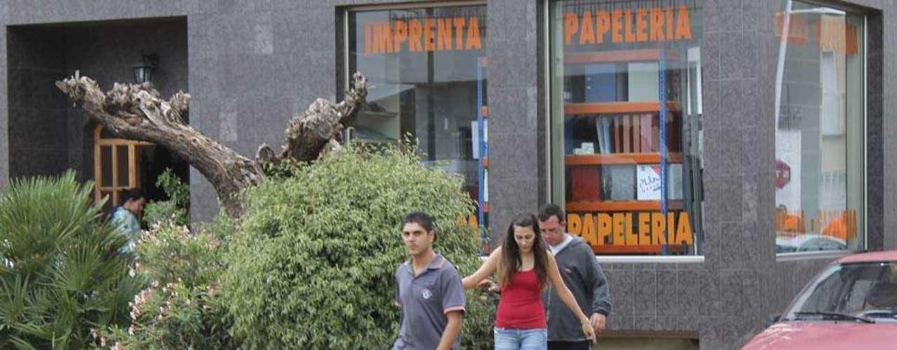 Además se produjeron daños en la red de carreteras del Estado y en las infraestructuras ferroviarias, especialmente en Valencia, Almería y Murcia, con cortes en el tráfico ferroviario de la línea del AVE (Alta velocidad) entre Albacete y Valencia y de un tramo de la línea convencional en Málaga.