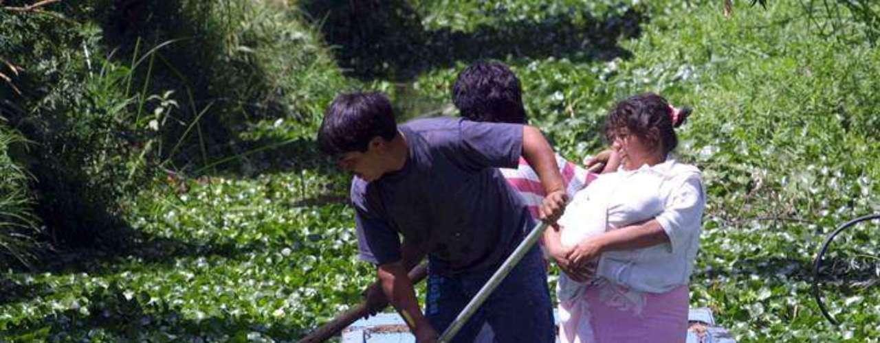 El documento señala que el Índice de Desarrollo Humano  (IDH) de los hogares pasó de un valor de 0.6277 a 0.6291. Dicho índice se mide a través de indicadores de salud, educación e ingresos. La representante residente del PNUD en México, Marcia de Castro, indicó que los resultados del informe demuestran que el crecimiento no es igual y las brechas persisten en las familias mexicanas y en todos los sectores de la sociedad.