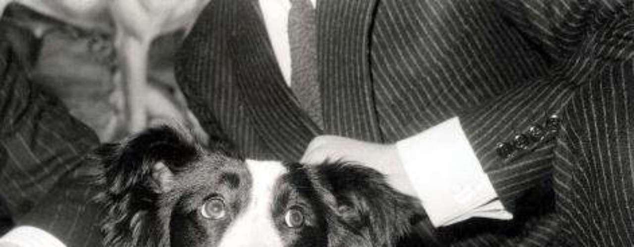 La policía echó a perder una 'negociación' con los ladrones, pero el perro 'Pickles' salvó al mundo de la tragedia.