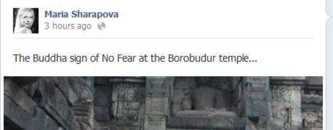 A Maria Sharapova le gusta explorar nuevos lugares y a muchos les gusta cuando envía fotografías sobre sus aventuras.