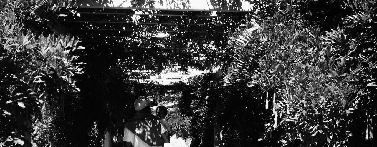 Jay Z de caminata con su mejor compañera: Blue Ivy.La foto fue compartida por Beyonce en su página de Iambeyonce.com