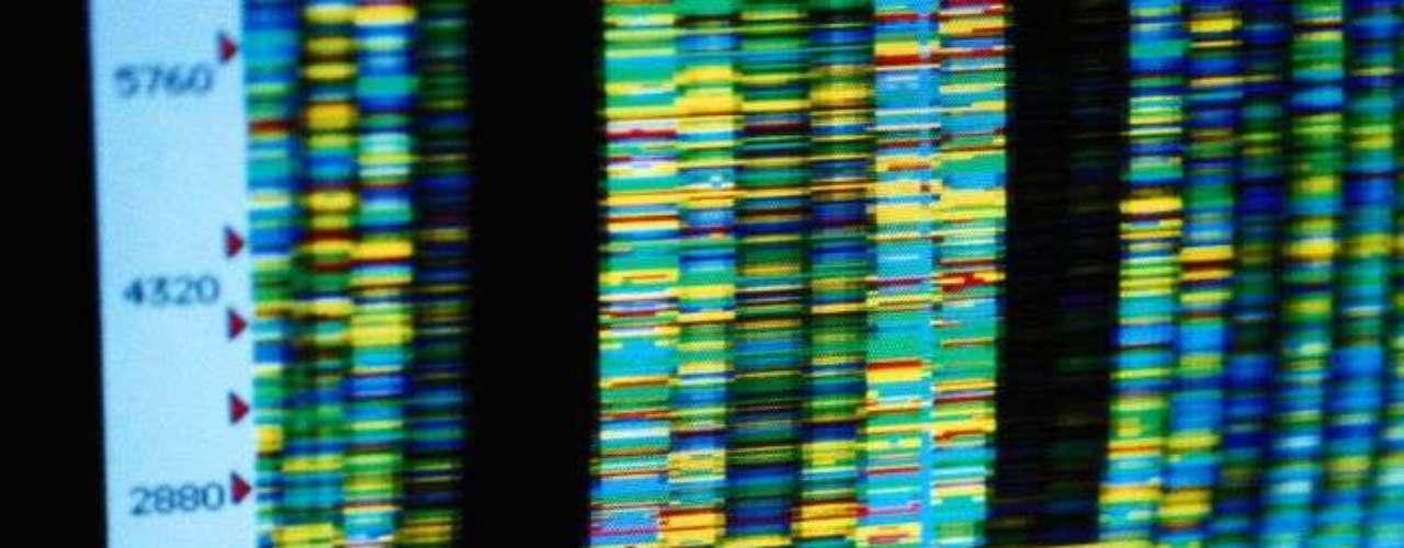 Llamado AXN, el hallazgo podría ser un avance importante para el tratamiento de enfermedades como la leucemia, cáncer de próstata y mama, además de facilitar estudios con las células madre.