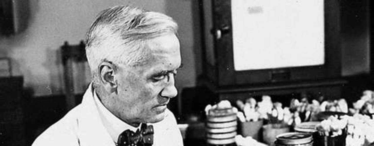 La penicilina.- Alexander Fleming descubre la penicilina, a continuación, Howard Florey y Chain Boris aislaron y purificaron el compuesto, produciendo el primer antibiótico. El descubrimiento de Fleming viene completamente por accidente cuando se da cuenta de que el moho ha matado a una muestra de bacterias en una placa de Petri que languidece bajo una pila en el fregadero de su laboratorio. Fleming aísla una muestra del molde y lo identifica como Penicillium notatum. Con la experimentación controlada, Florey y Chain después encontraron la cura con el compuesto al administrarlo a ratones con infecciones bacterianas.