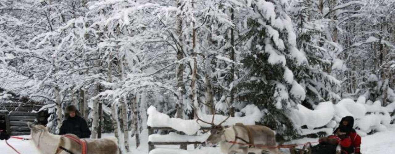 Laponia, el hogar de Papá Noel . Parajes blancos hasta donde alcanza la vista en los que vivir increíbles aventuras.  Un recorrido en un trineo tirado por perros o por renos, o un paseo en moto de nieve son algunas de las sugerencias de José Manuel Naranjo, director de Mundo Ártico, recomienda para quien vaya a Laponia.