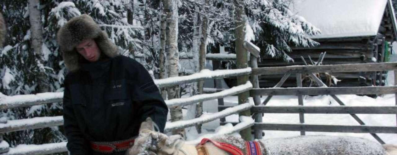 Una travesía en trineo, una ruta en un barco rompehielos o el maravilloso espectáculo de la aurora boreal son algunas de las experiencias que nos aguardan en la tierra de Papá Noel.   Un cuidador con un reno en la zona finlandesa del hogar de Santa Claus.