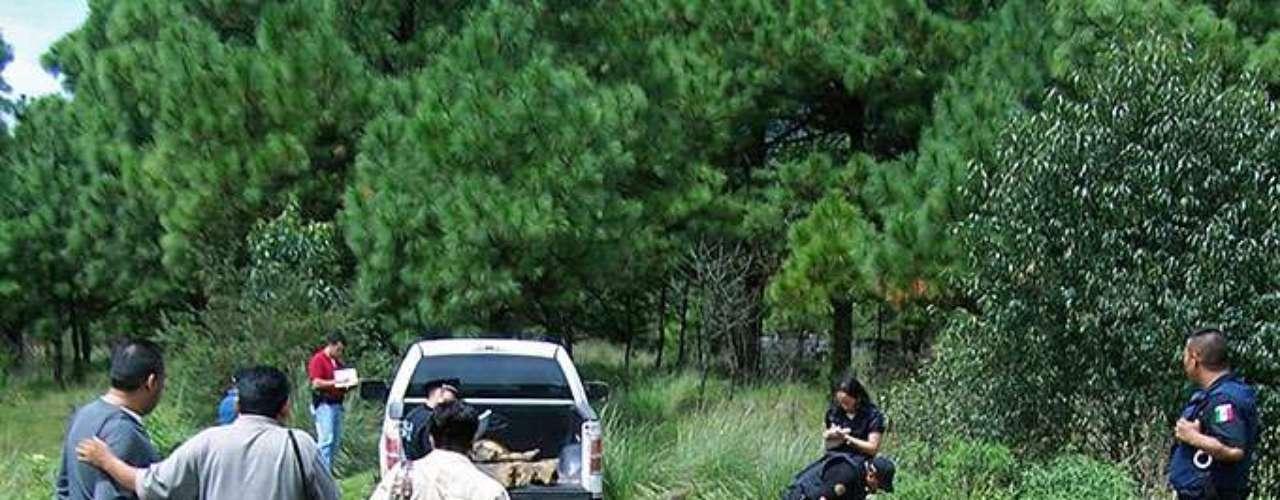 Desde inicios de año más de 1,000 elementos de corporaciones federales y de los estados de Michoacán y Jalisco se han movilizado a lo largo de la frontera entre ambas entidades en un intento de contener los hechos de violencia ahí registrados.