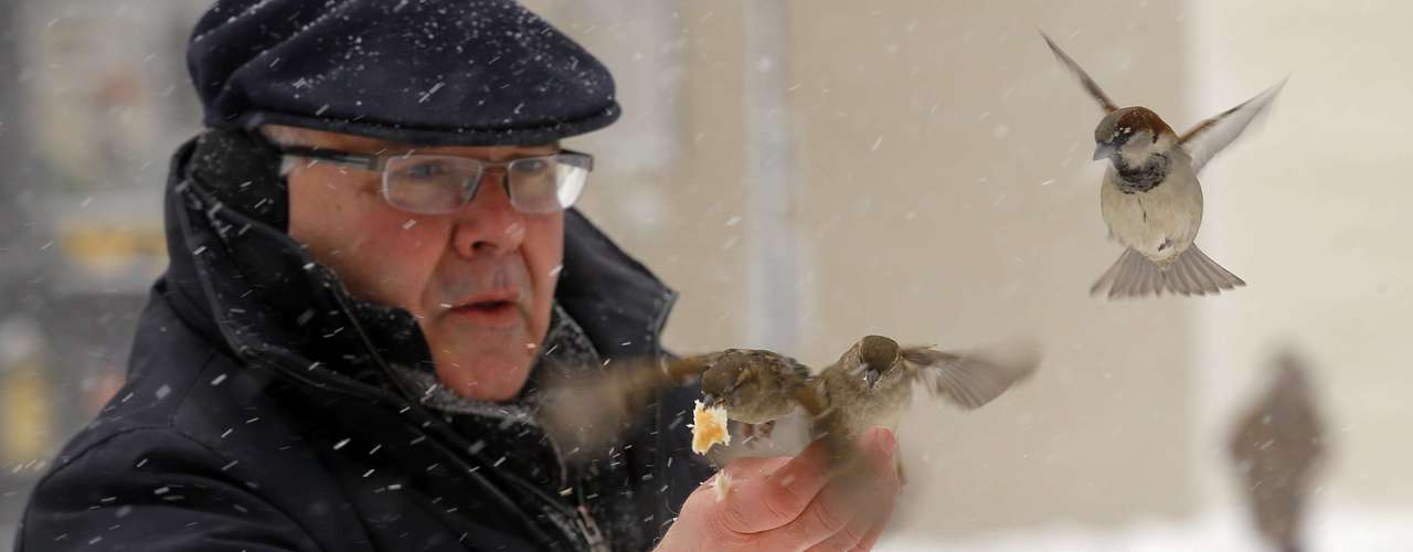 Peter Maglia feeds birds in Boston, Massachusetts February 9, 2013 during a winter blizzard.   REUTERS/Brian Snyder    (UNITED STATES - Tags: ENVIRONMENT)