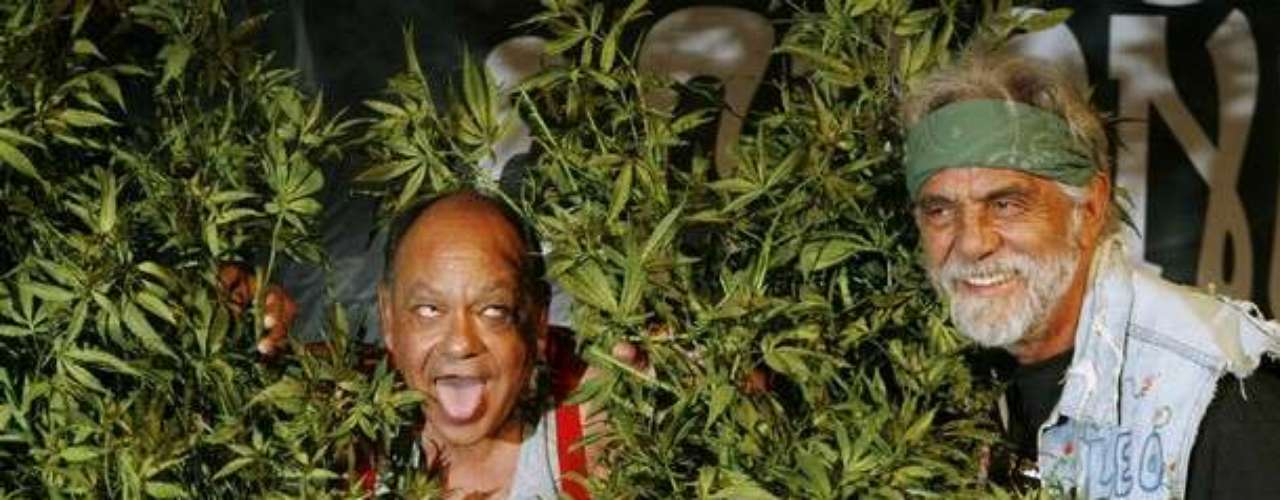 Los dos integrantes del famoso grupo humorístico 'Cheech & Chong', conformado por Richard hicieron, además de sus shows en vivo, diez películas de cine entre 1970 y finales de los 80''s. Sus temáticas giraban en torno a sus vidasd 'hippies'. donde la marihuana no sólo estaba presente, sino que abundaba.