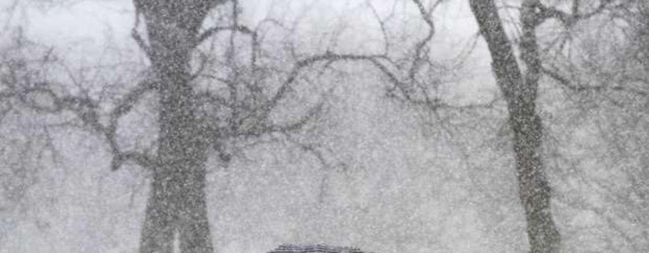 Se espera que caigan casi cinco centímetros de nieve en St. Louis, Missouri, y para este jueves la precipitación se volvería aguanieve y lluvia congelada, por lo que los viajes se verían afectados.