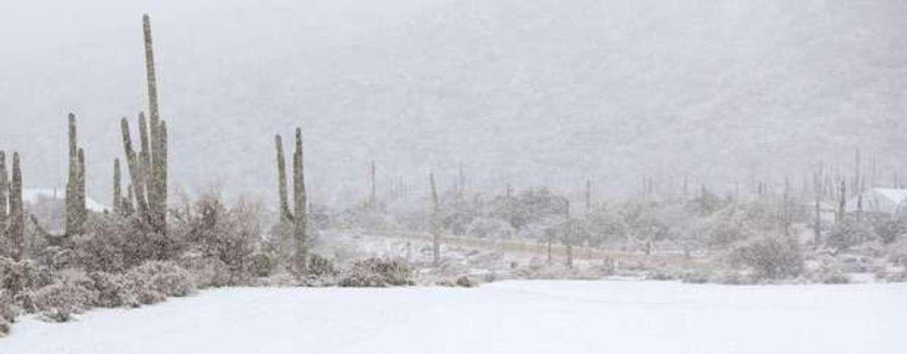 Las autoridades temen que la tormenta invernal sea la peor que haya azotado la región centro-norte en los últimos dos años. En el 2011, una tormenta que se prolongó por dos días provocó una veintena de muertos y dejó a cientos de miles de usuarios sin electricidad, por varios días en algunos casos. En su peor momento, la nieve opacó la visibilidad de tal manera que la autopista Interestatal 70 fue cerrada en todo el estado de Missouri.