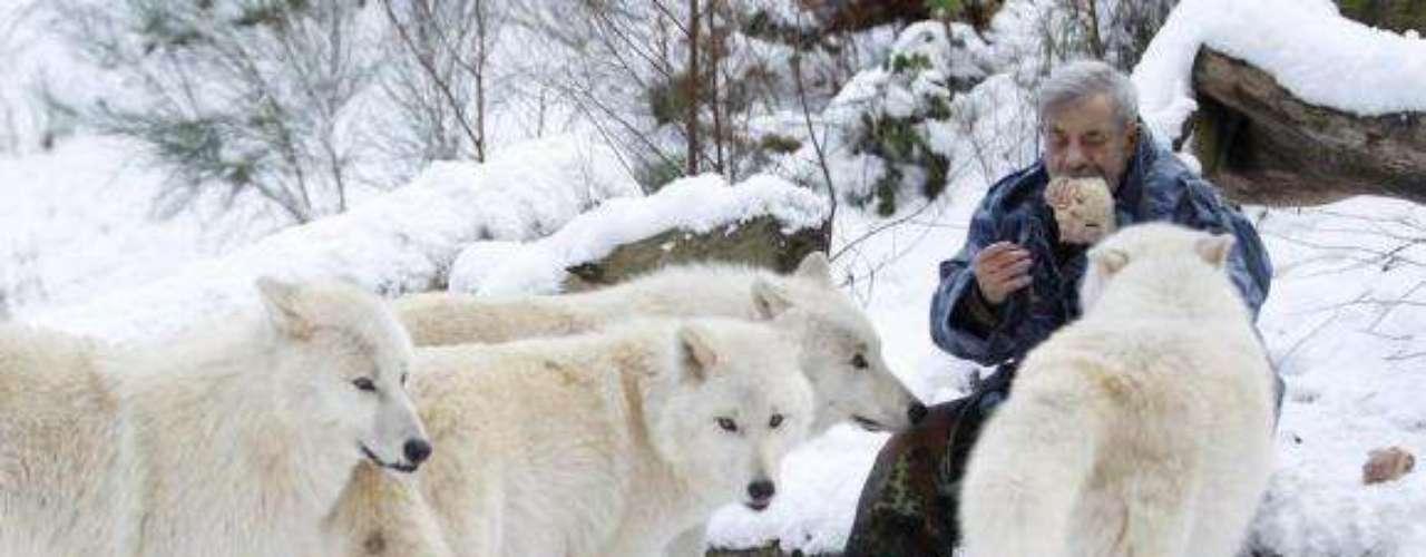 El fotógrafo a cargo de la asignación fue Lisi Niesner, quien tuvo que convivir con Freund y sus lobos.