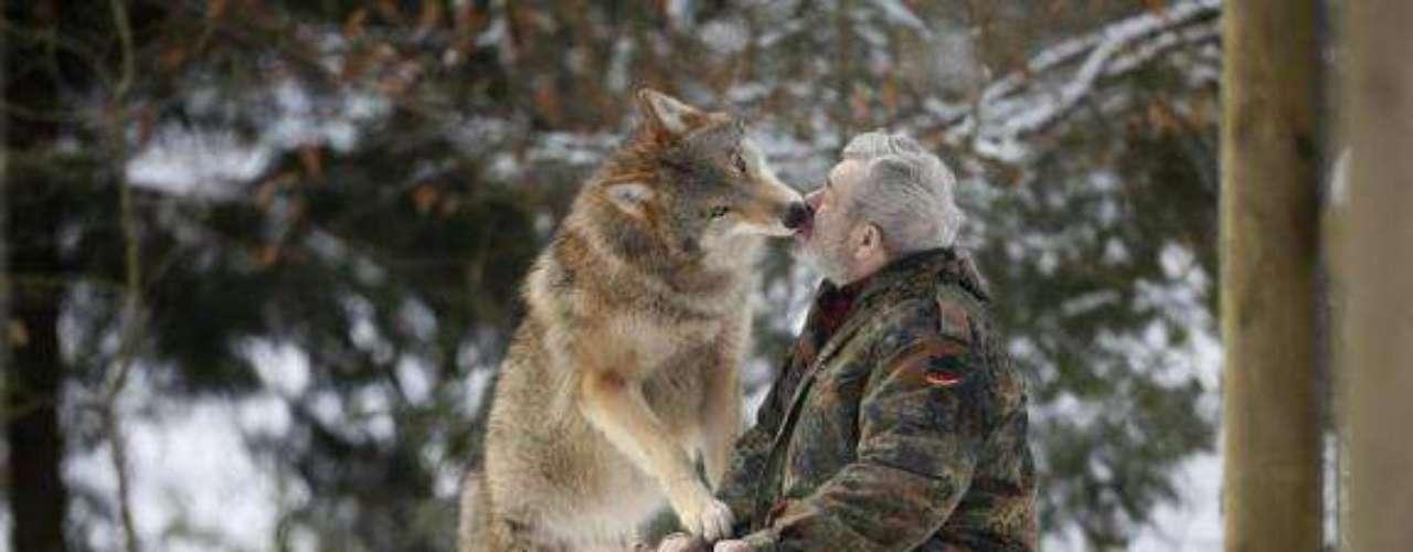 Evidentemente Freund no le tiene miedo a estos mamíferos, pues los besa como si se tratra de un animal doméstico.