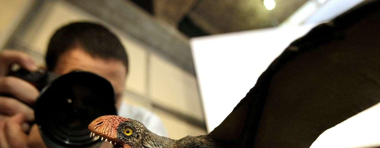 ¿Cómo volaban las aves prehistóricas? Con gran dificultad. Los pterosaurios más grandes (que en realidad no se clasifican como dinosaurios) eran mucho más grandes que los pájaros de mayor tamaño que viven en la actualidad.