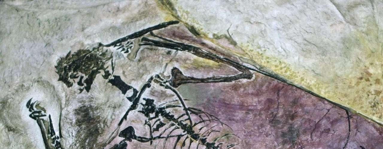 Una teoría afirma que podrían haber usado acantilados marítimos o montañas como plataforma de lanzamiento. Pero es difícil probarlo porque todos los fósiles de quetzlcoatlus han sido hallados tierra adentro.