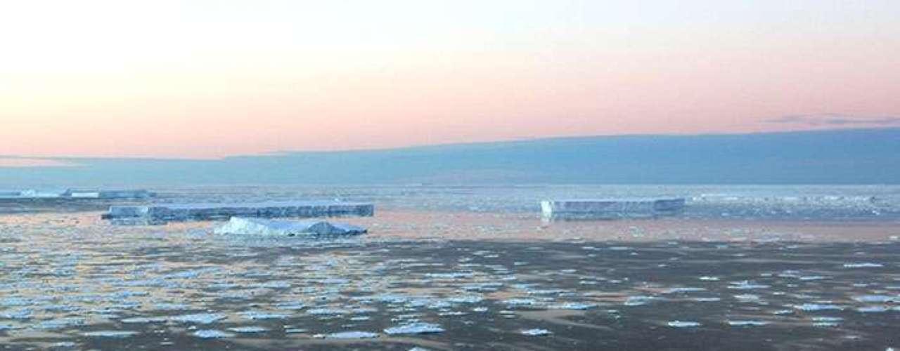 El Krill en su mayoría tiende a quedarse bajo el Océano Austral congelado. Pero a medida que la capa de hielo desaparece a causa del cambio climático, se contrae y mueve su hábitat más al sur... obligando a los pingüinos a seguirlo o morir.