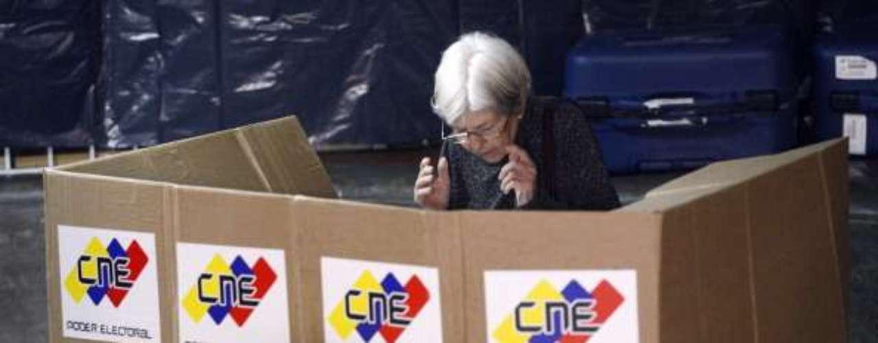 El CNE adelantó que el padrón electoral que se utilizapara los cercanos comicios será el mismo que sirvió para las elecciones del pasado mes de octubre en 2012, donde quedó electo el ahora fallecido presidente Hugo Chávez. Los electores, una vez que verifiquen sus datos, se dispondrán a elegir al candidato a candidata de su preferencia.