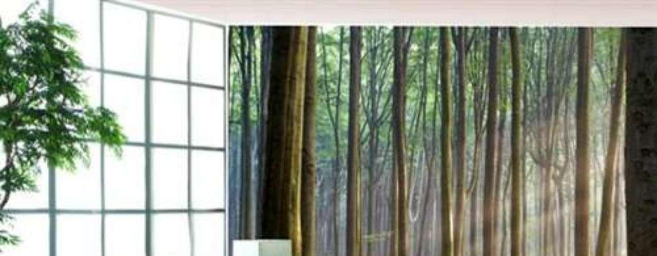 Vigas de madera sobre las que dejar que se mezan algunas macetas, de las que caen las hojas con sus recalcitrantes colores, acompaña el conjunto entre lo más alto de la habitación y la parte más baja.