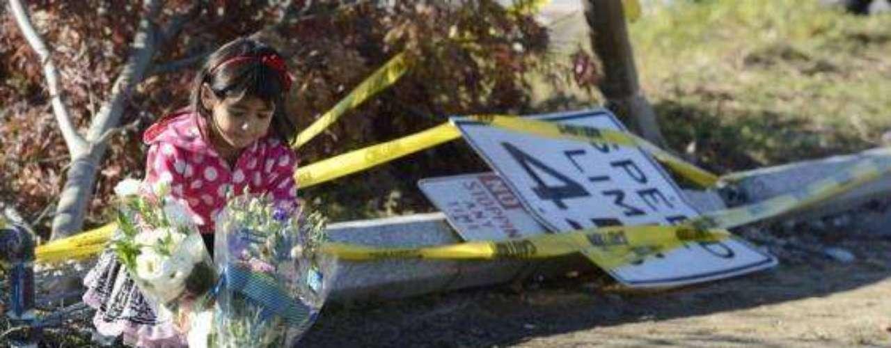 Paul Walker murióel pasado 30 de noviembre tras un accidente automovilístico. En el lugar de la tragedia, varios de sus seguidores han manifestado su tristeza con flores y mensajes dedicados al actor.