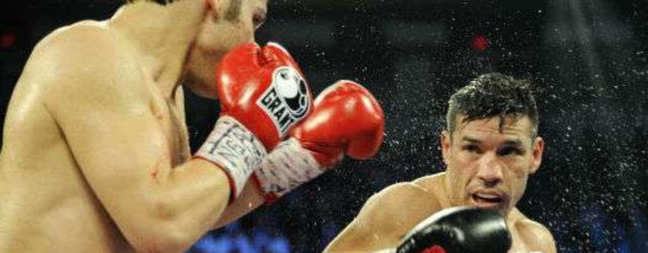 Sergio 'Maravilla' Martínez regresará a la actividad en el 2014 y podría enfrentar a Saúl Álvarez, Miguel Cotto o darse una revancha contra Julio César Chávez Jr.