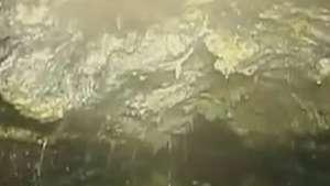 'Iceberg de gordura' é encontrado no esgoto de Londres Video: