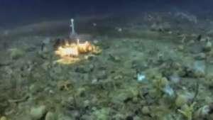 Cientistas estudam acidificação na vida submarina da Antártida Video:
