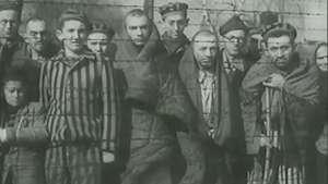 Auschwitz guarda memórias que humanidade não pode esquecer Video:
