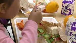 Escuela en Nueva York es 100% vegetariana Video: