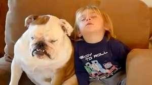 Bebé y su mascota luchan para no quedarse dormidos mientras ven TV Video: