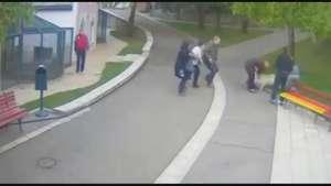 Cámara de seguridad capta ataque de perro a niña de 2 años Video: