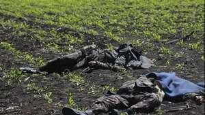 Matan a 14 soldados en el este de Ucrania Video: