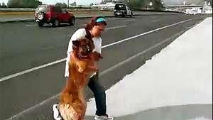 Arriesga su vida para rescatar a perro varado en una autopista Video: