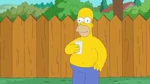Homero Simpson y su peculiar reto del 'Ice Bucket Challenge' Video: