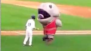 La mascota de un equipo de béisbol 'se traga' a un jugador rival Video:
