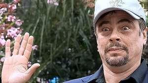 Benicio del Toro recibirá el segundo premio Donostia Video: