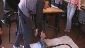 Butiá, un proyecto que forma a escolares uruguayos en robótica avanzada Video: