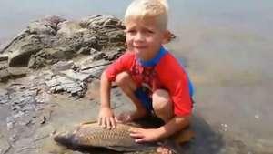 Ternura al máximo: niño llora por muerte de pez Video: