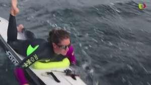 Travesía antártica sobre un paddleboard Video: