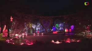 Family Set to Break Christmas Lights Record Video: