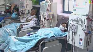 Creencias culturales frustran trasplantes de órganos en Bolivia Video: