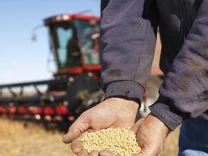 Muchos campesinos argentinos están convencidos de los beneficios del cultivo transgénico. Foto: Getty Images